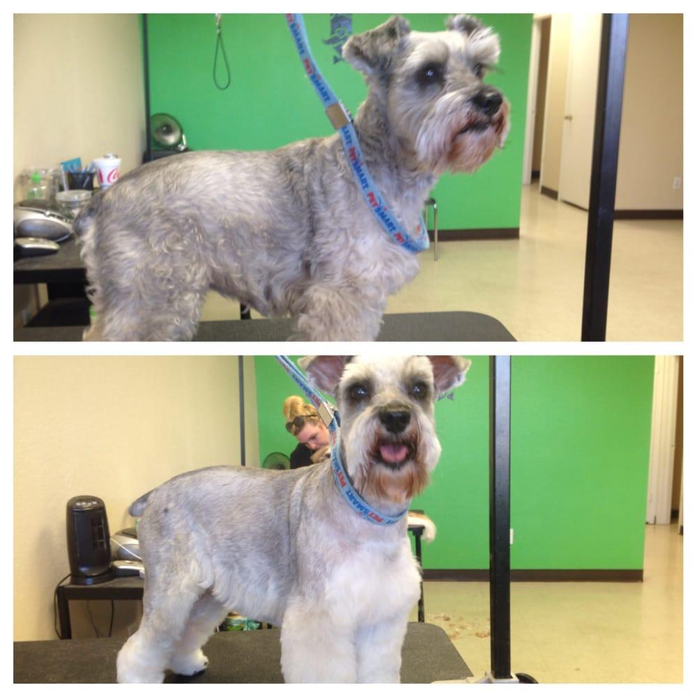 Doggie Styles Pet Salon: 407 Main St, Marble Falls, TX