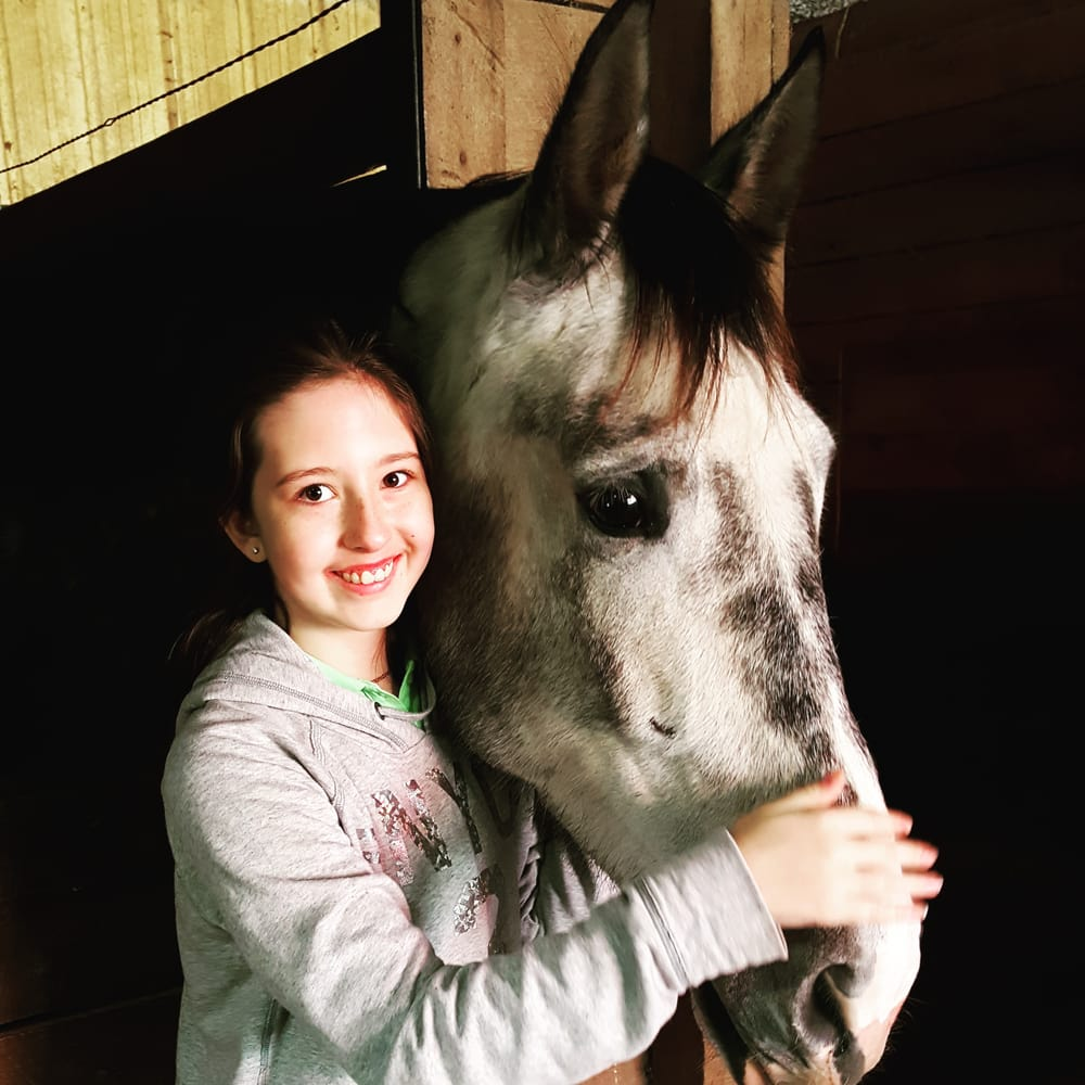 Wild Rose Equine Center: 17105 Old Pike Rd, Dearborn, MO