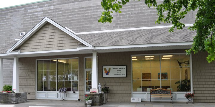 Animal Medical Care of CT: 490 Cornwall Ave, Cheshire, CT