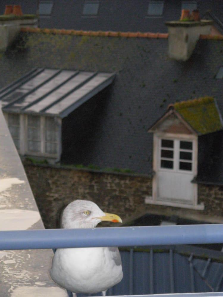 Hotel Mercure St Malo