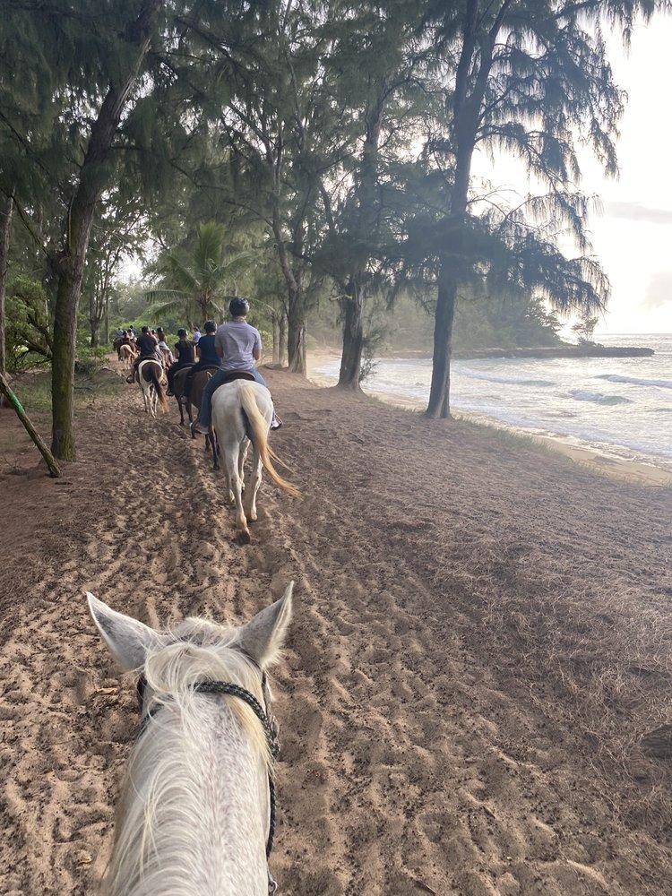 Stables at Turtle Bay: 57-091 Kamehameha Hwy, Kahuku, HI