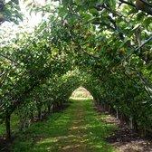 Photo Of Lee Orchard Garden   Plainsboro Township, NJ, United States