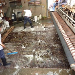 Simonian Oriental Rug Cleaners 49 Reviews Carpet