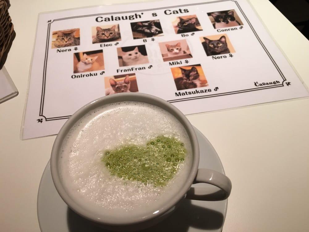 Cat Cafe Calaugh