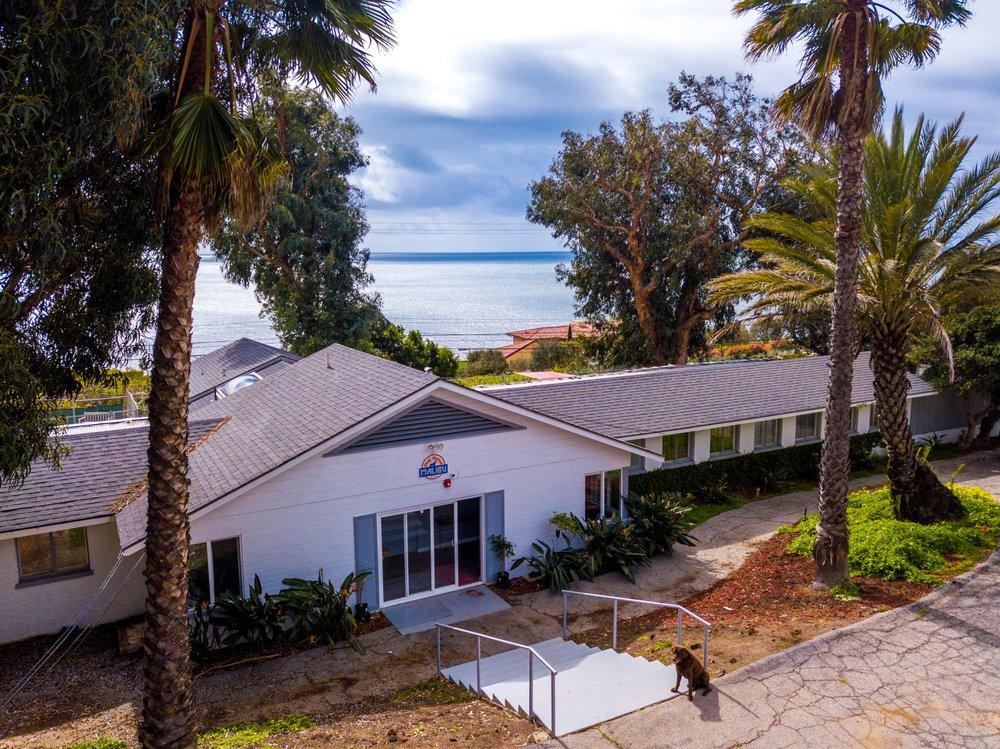 Malibu Dog Hotel: 3646 Puerco Canyon Rd, Malibu, CA