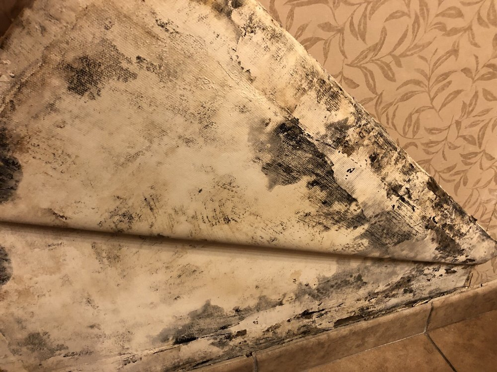 Photo of Red Lion Hotel Redding - Redding, CA, United States. Mold on
