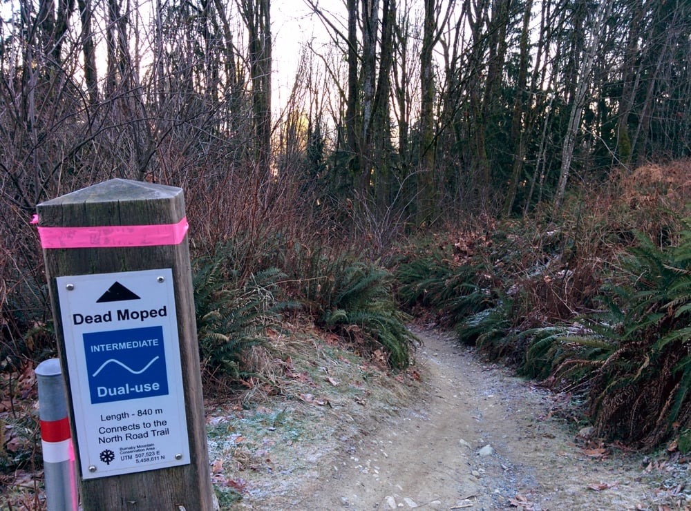 how to go to burnaby mountain