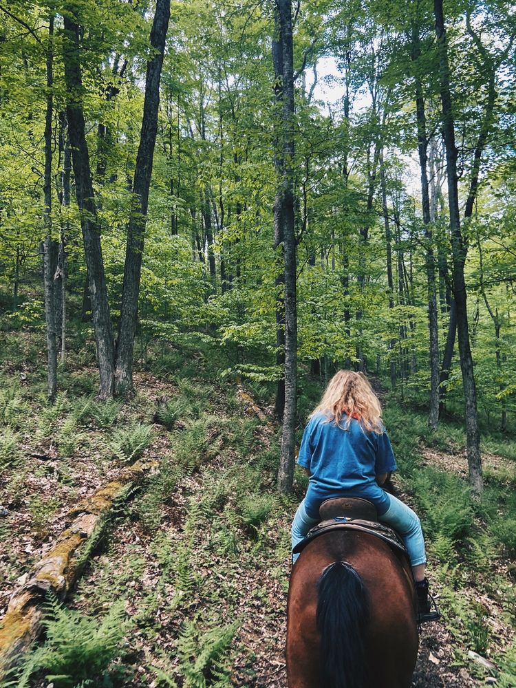 Summit Trail Rides: 2028 S Woods Rd, Coudersport, PA