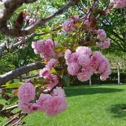 The Gardens Of The World 293 Photos 79 Reviews Botanical Garden Thousand Oaks Ca