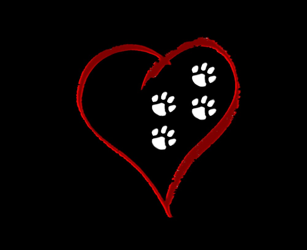Four Loving Paws Veterinary Services Inc.: 965 W Craig Ave, Brazil, IN