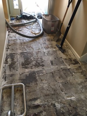 Pace Floor Removal Local Services Louisville Ky Phone Number