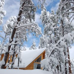 Classy Cabins AZ - 23 Photos - Vacation Rentals - Flagstaff