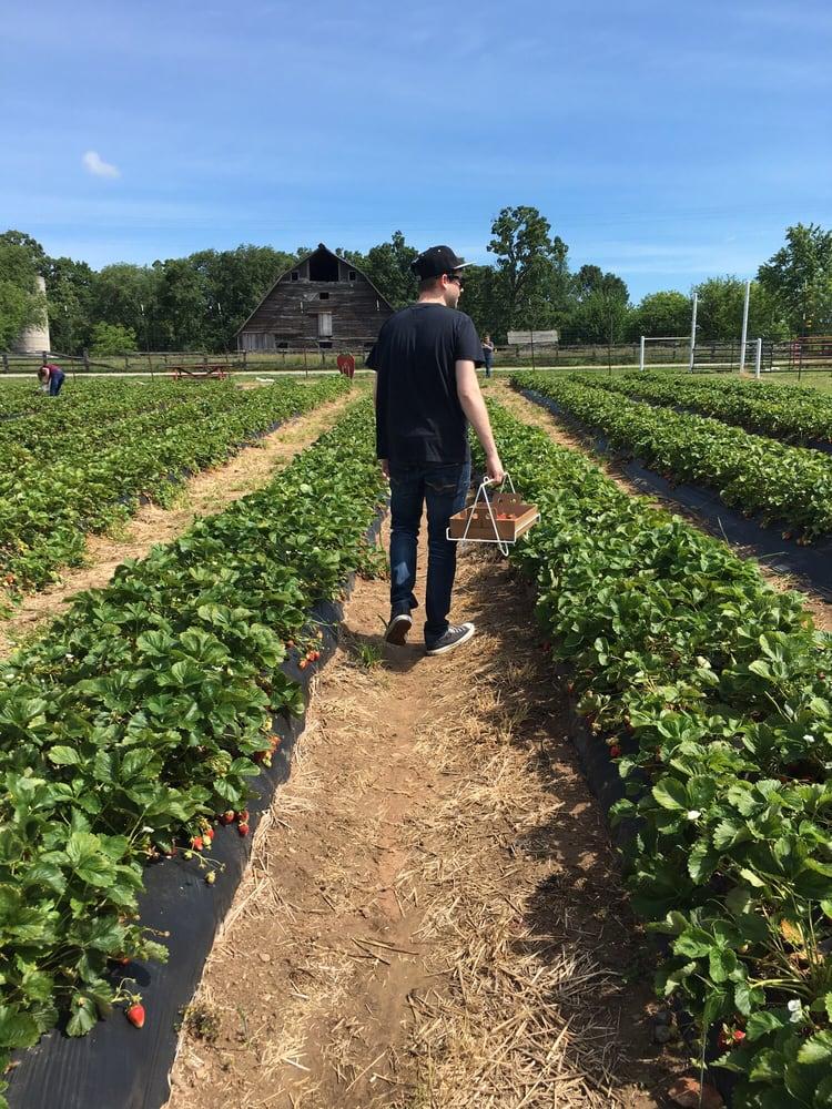 Boz's Berry Farm: 13920 W State Hwy Tt, Republic, MO