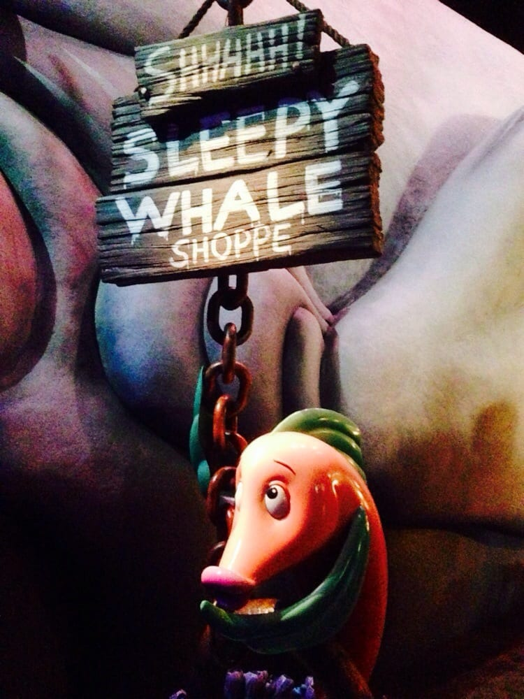 The Sleepy Whale Shop