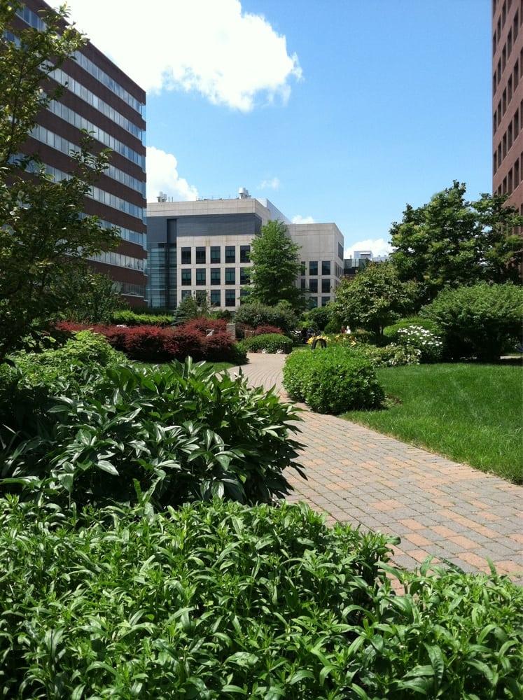 Photos For Cambridge Center Roof Garden Yelp