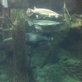 Texas Freshwater Fisheries Center - 33 Photos & 10 Reviews