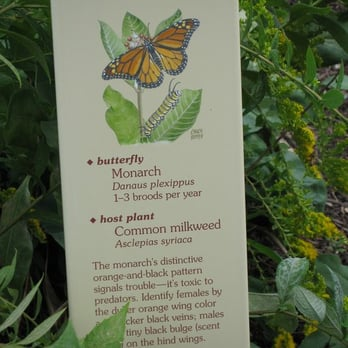 Charmant Photo Of The Smithsonian Butterfly Habitat Garden   Washington, DC, United  States