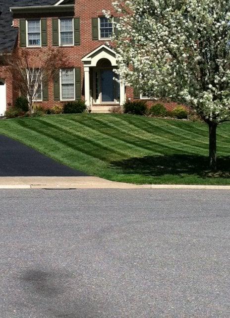 Baumann's Lawn & Landscape: 14409 Fairdale Rd, Silver Spring, MD