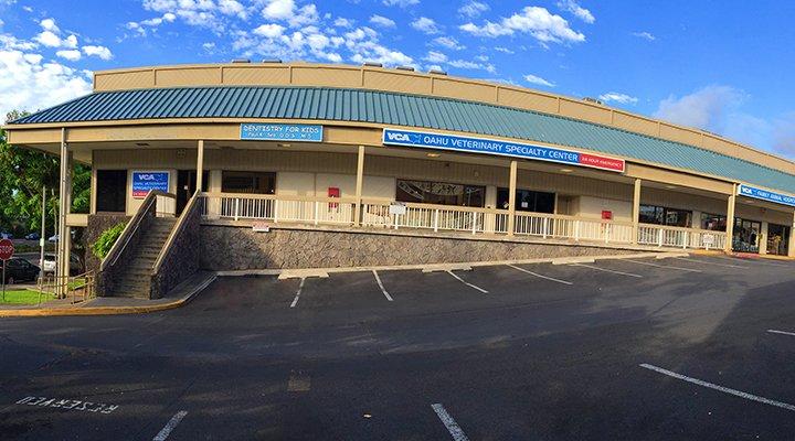 VCA Family and Oahu Veterinary Specialty Center