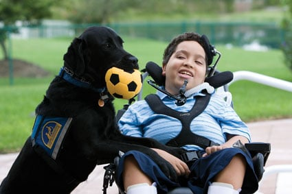 Canine Companions for Independence: 8150 Clarcona Ocoee Rd, Orlando, FL