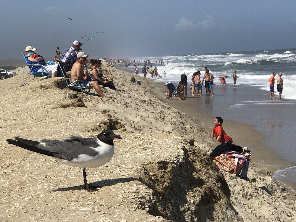 Assateague National Shoreline Beach: Beach Rd, Chincoteague Island, VA