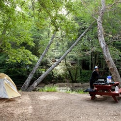 Riverside Campground & Cabins logo