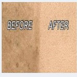 Palmers Carpet Cleaning Carpet Cleaning Ogden Ut