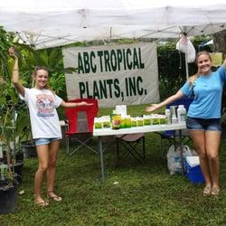 Photo Of Abc Tropical Plant Nursery Largo Fl United States Yes