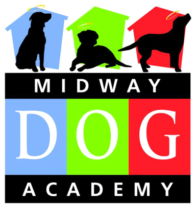 Dog Training Near Lockport Il