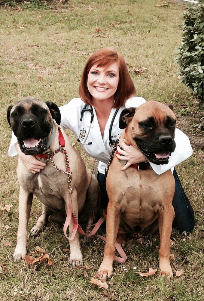Southern Haven Veterinary Clinic & Pet Retreat: 612 Largent St, Lufkin, TX