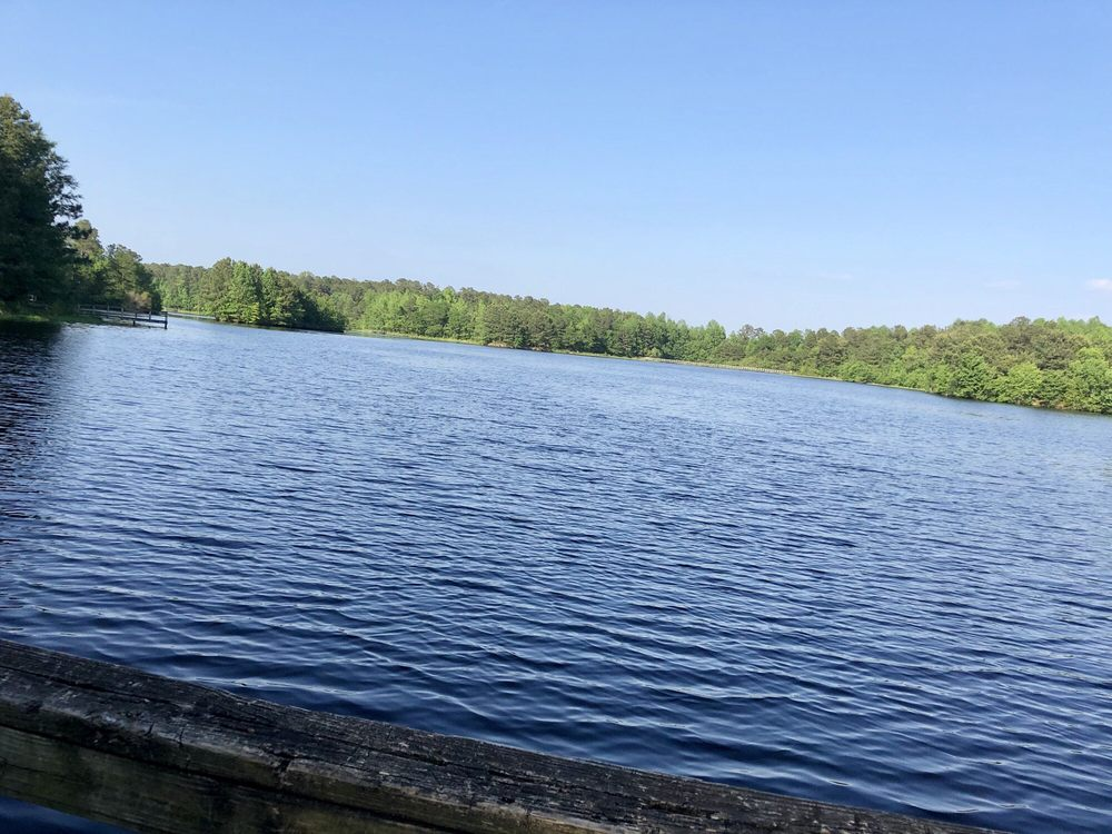 Cabin Lake County Park: 220 Cabin Lake Rd, Pink Hill, NC
