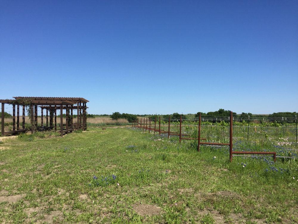 Dancing Bee Winery: 8060 E US 190, Rogers, TX