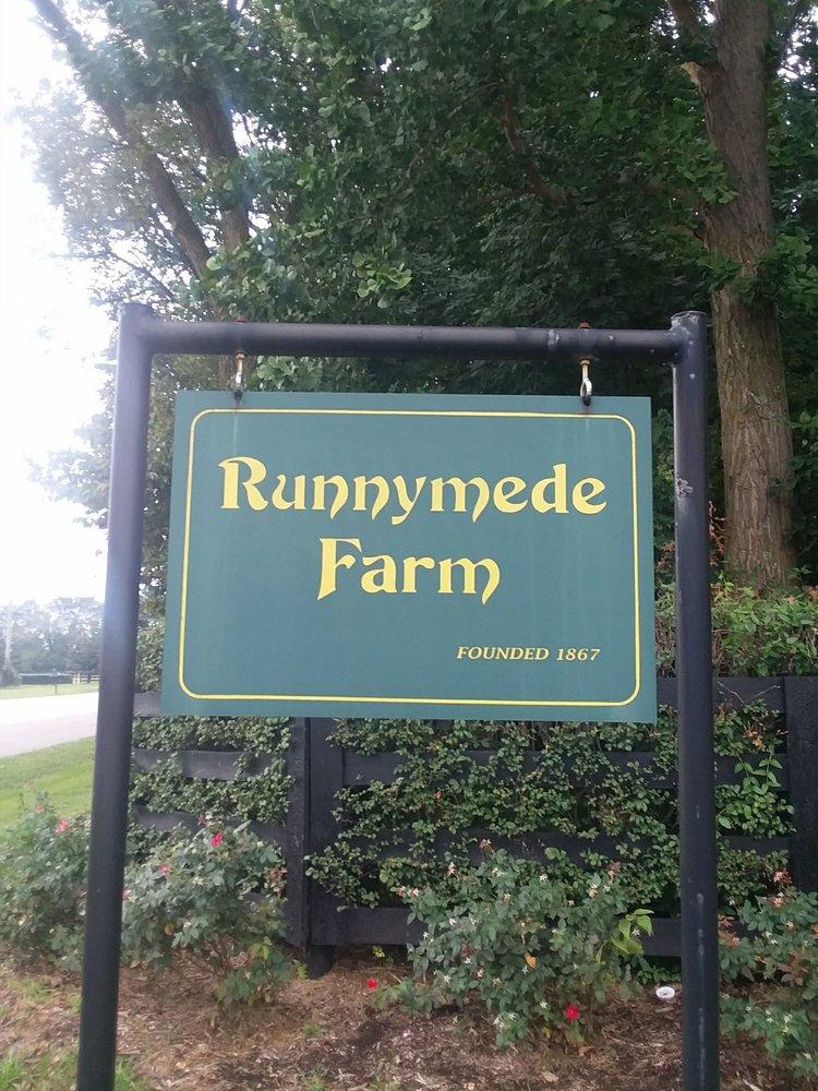 Runnymede Farm: 600 Cynthiana Rd, Paris, KY