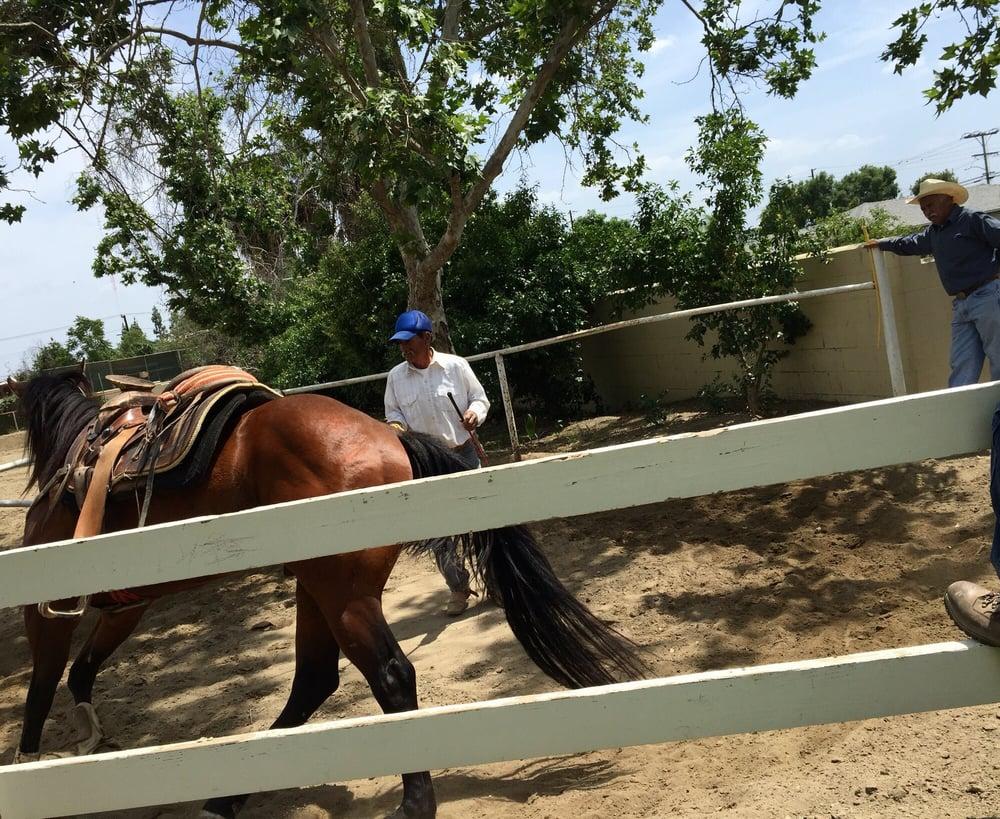 Avocado Heights Park: 14105 Don Julian Rd, La Puente, CA