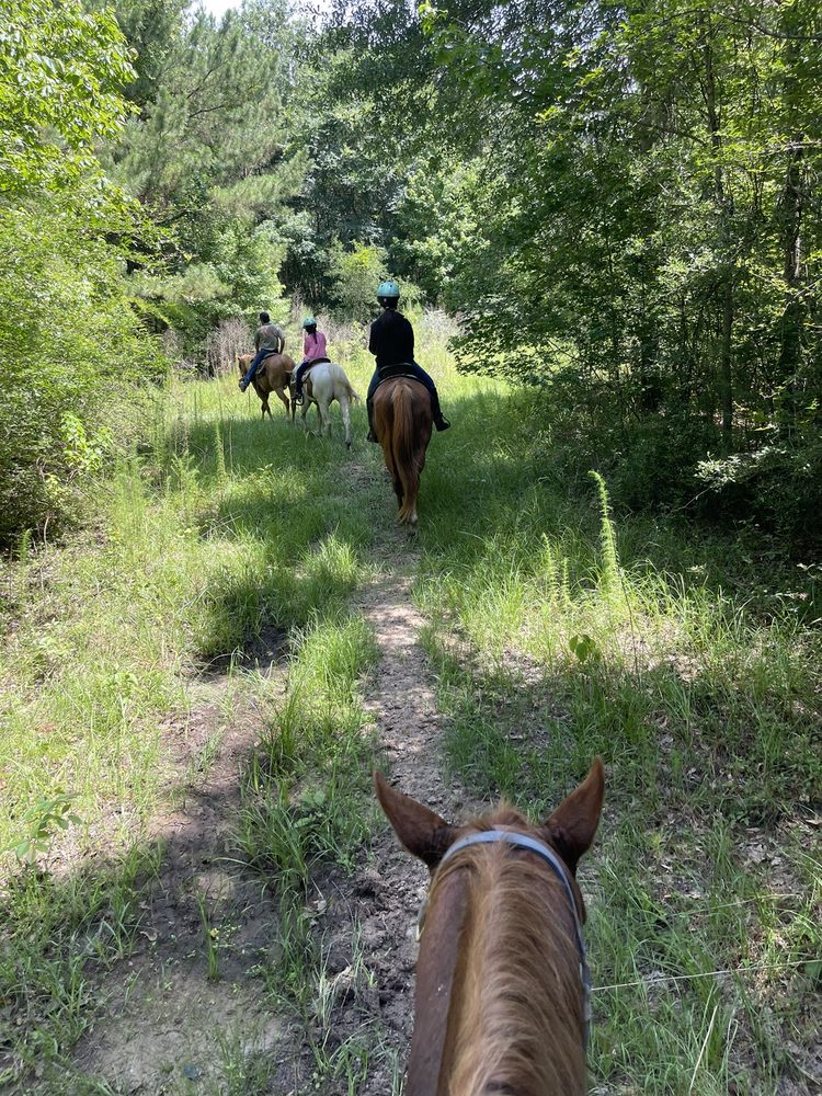 Tempe Creek Ranch: 1694 Fm 2457, Livingston, TX