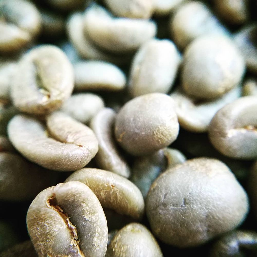Fieldheads Coffee Company: 482 Osborn Ave, Bigfork, MT
