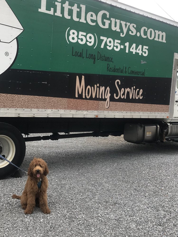 Little Guys Movers: 1591 Winchester Rd, Lexington, KY