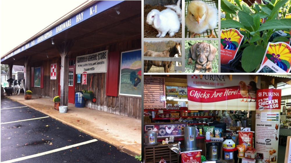 Gambrills General Store: 865 Annapolis Rd, Gambrills, MD