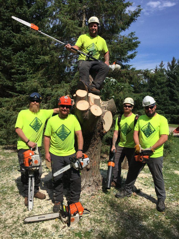 Remi's Tree Service: 357 Grandview Ave, Menasha, WI