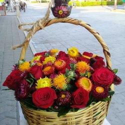 Flores De Oaxaca 15 Fotos Florerías Arteaga 520
