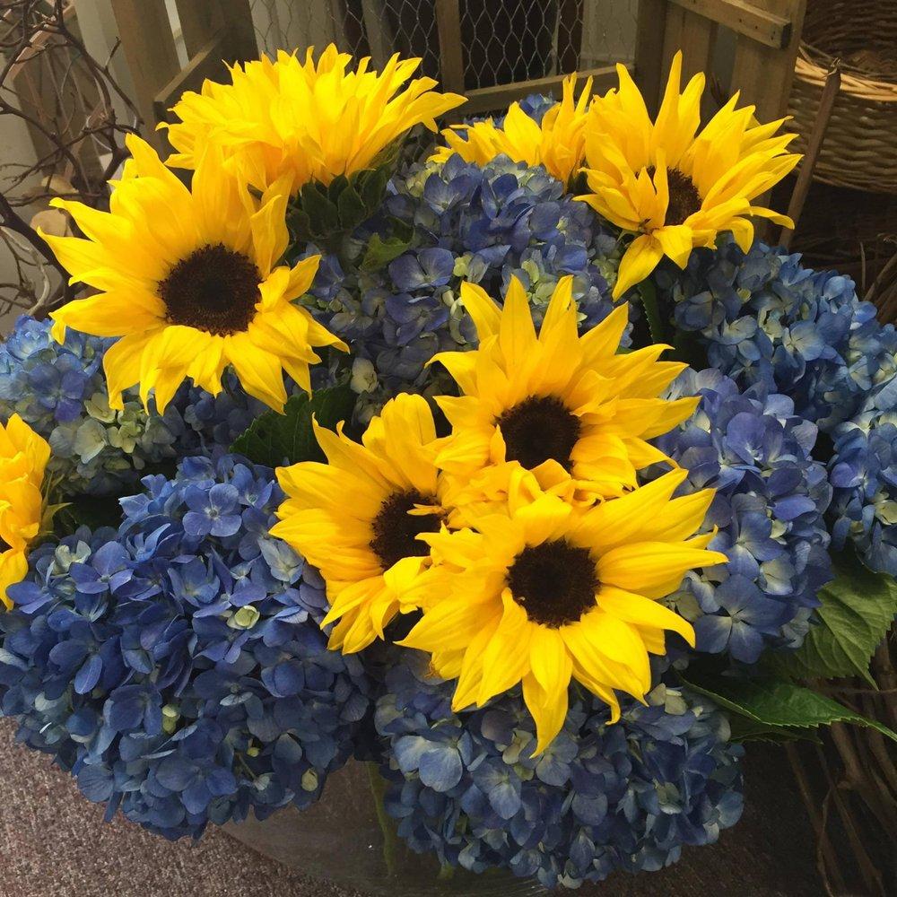 B & C Hillsborough Florist: 601 Rt 206, Hillsborough, NJ