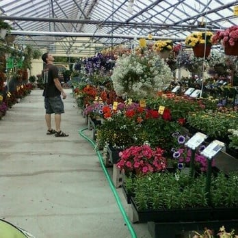 deneweth s garden center 14 photos nurseries gardening 13790 highland rd hartland mi