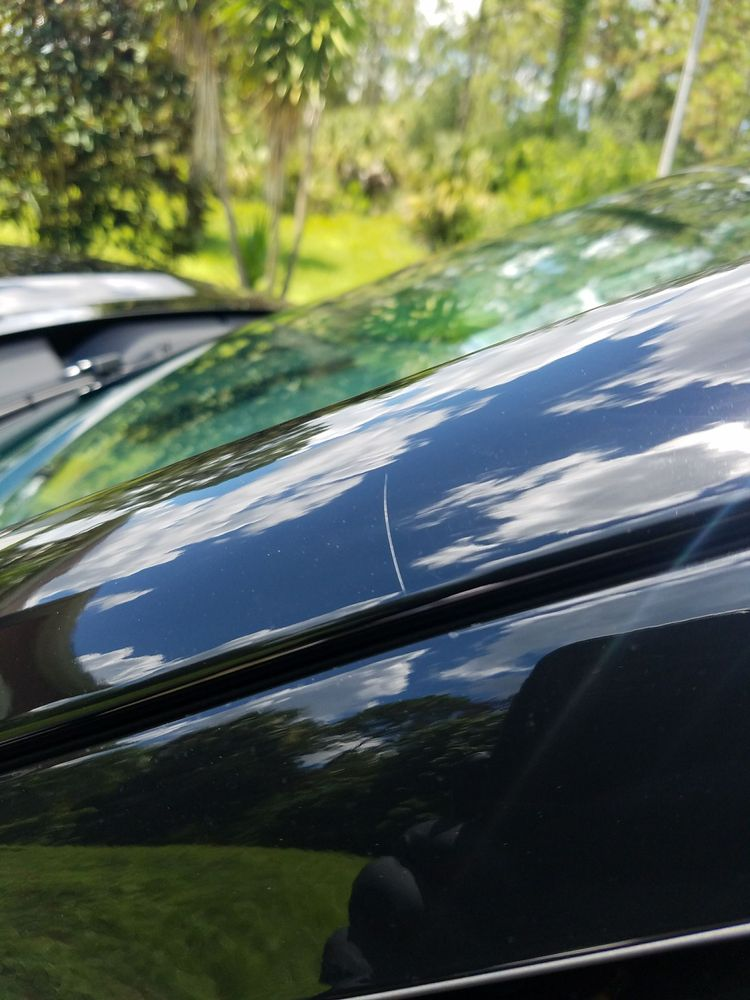 Photos For Beverly Hills Window Tinting Treatments Yelp