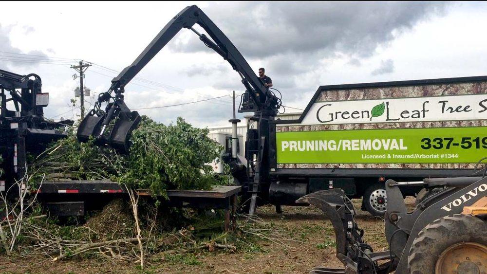 Green Leaf Tree Service: 139-B James Comeaux Rd, Lafayette, LA