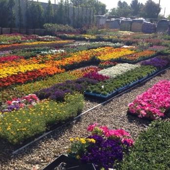 Photo Of Vineland Nursery North Hollywood Ca United States