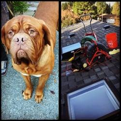 Steve S Plumbing 22 Photos Amp 63 Reviews Plumbing
