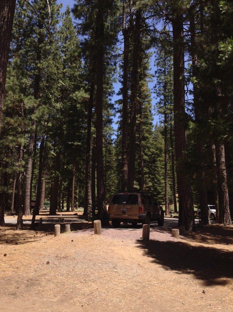 Ponderosa flat campground fishing prattville butt for Ponderosa cabins california