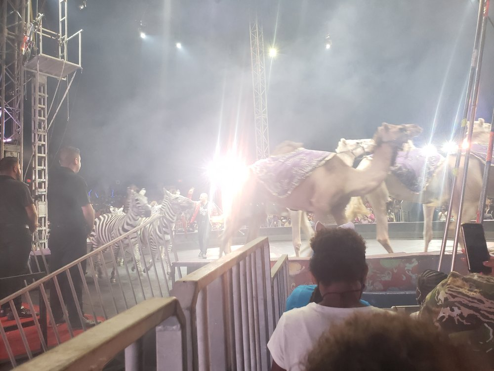 UniverSoul Circus: 165 Waterfront St, National Harbor, MD