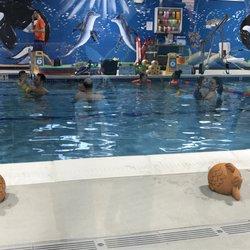 Goldfish swim school marlborough 13 photos swimming lessons schools 43 apex dr for Marlborough college swimming pool