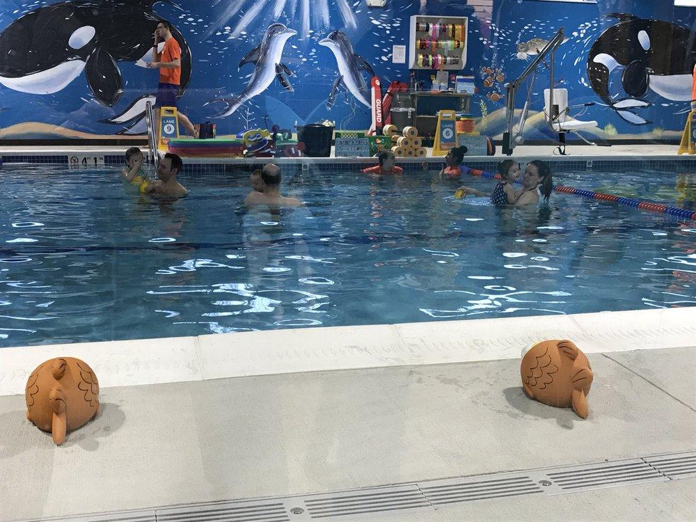 Goldfish Swim School Marlborough 13 Photos Swimming Lessons Schools 43 Apex Dr